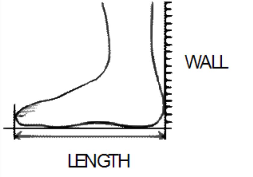 6d83cc127a Foot Measurement – Savoy Cats